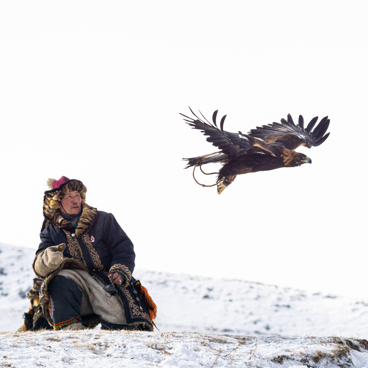 PHOTOGRAPHY & VIDEOGRAPHY IN MONGOLIA